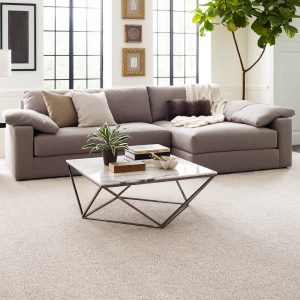Living room Carpet Flooring | BMG Flooring & Tile Center