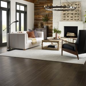 Living Room Area Rug Inspiration Gallery | BMG Flooring & Tile Center