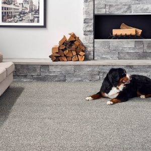 Mollie's Turn Blue Waltz Carpet | BMG Flooring & Tile Center