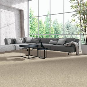 Natural Splendor Carpet Flooring | BMG Flooring & Tile Center