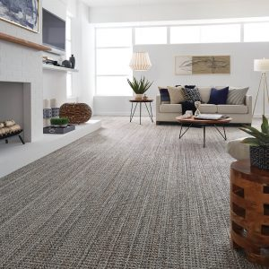 JURA-GREY | Carpet Inspiration Gallery | BMG Flooring & Tile Center