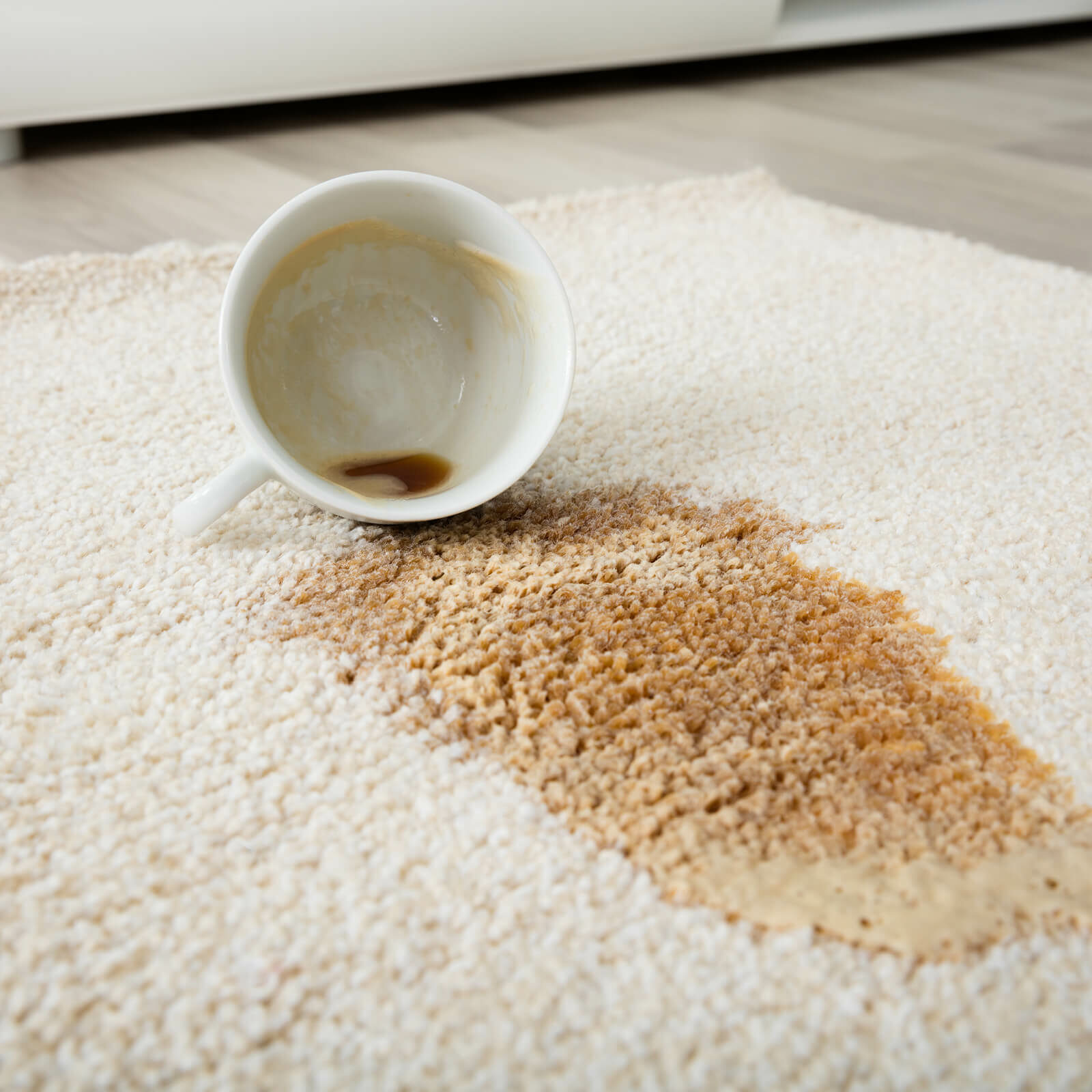 Area Rugs carpet cleaning | BMG Flooring & Tile Center